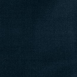 Navy color swatch