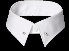 An INDOCHINO pinned collar.