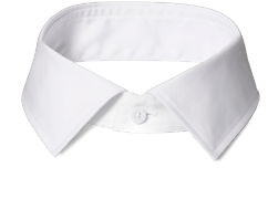 An INDOCHINO spread collar.
